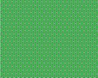 Groene slanghuid, royalty-vrije illustratie