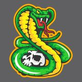 Groene slangmascotte Royalty-vrije Stock Foto
