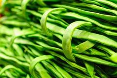 Groene snijboon Royalty-vrije Stock Foto