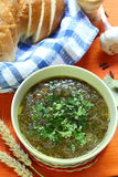 Groene soep met peterselie Stock Afbeelding