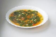 Groene soep met zuring en netel in een witte plaat Russische traditionele netelsoep royalty-vrije stock afbeelding