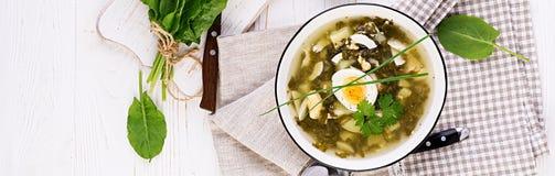 Groene soep van zuring in witte kom banner stock afbeeldingen