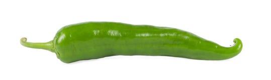 Groene Spaanse peperpeper Royalty-vrije Stock Afbeelding