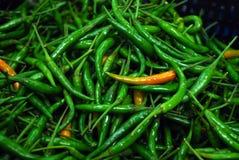 Groene Spaanse pepers Royalty-vrije Stock Foto