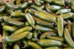 Groene Spaanse peperspeper Royalty-vrije Stock Afbeelding