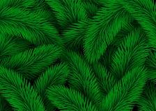 Groene sparrentakken Van achtergrond ontwerpkerstmis Textuur Abstracte Illustratie Royalty-vrije Stock Fotografie