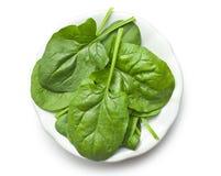 Groene spinaziebladeren op plaat Stock Foto