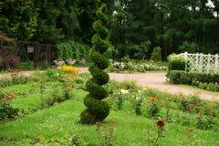 Groene spiraal in landschapsontwerp Stock Foto's