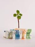 Groene Spruiten met geld Stock Foto's