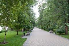 Groene steeg met banken in stedelijk park royalty-vrije stock afbeelding