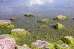 Groene stenen op de kust stock afbeelding