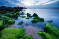 Groene Stenen in Tel Aviv Stock Fotografie