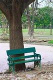 Groene stoel in de tuin Stock Afbeeldingen