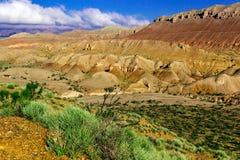 Groene struik op een achtergrond van rode bergen en blauwe hemel stock foto's