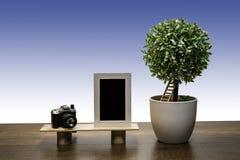 Groene struikboom in witte bloempot met Fotokader en Camera royalty-vrije stock fotografie