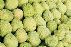 Groene suikerappel Royalty-vrije Stock Foto's