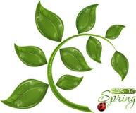 Groene takboom stock illustratie