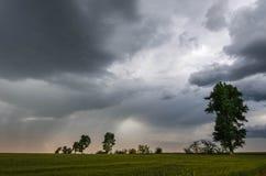 Groene tarwegebied en onweerswolken stock afbeelding