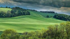 Groene Tarwegebieden met Stormachtige Wolken stock foto