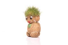 Groene Teddy Stock Afbeelding