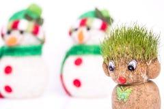 Groene Teddy And-sneeuwman Royalty-vrije Stock Foto