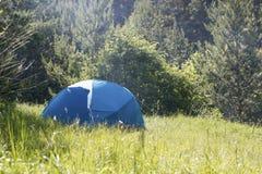 Groene tent in het groene de zomerbos bij zonnige dag Stock Afbeelding