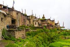 Groene terrasvormige gebieden en traditionele architectuur in het oude Tibetaanse Nar dorp, Annapurna-Behoudsgebied, Nepal royalty-vrije stock foto's