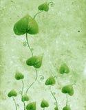 Groene Textuur Royalty-vrije Stock Foto