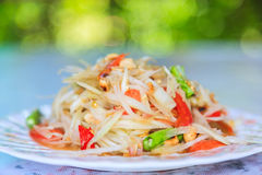 Groene Thaise de keuken kruidige heerlijk van de papajasalade Royalty-vrije Stock Afbeeldingen