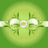 Groene thee absolut samenstelling vector illustratie