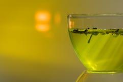 Groene thee in de zonnestraal Royalty-vrije Stock Foto's