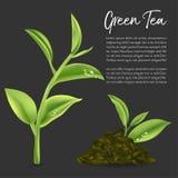Groene thee, Groen theeblad Stock Afbeeldingen