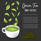 Groene thee, Groen theeblad Royalty-vrije Stock Fotografie