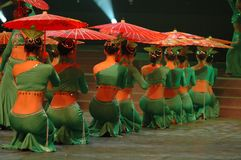 Groene thee meisje-2007 Jiangxi-het Feest van het de Lentefestival Royalty-vrije Stock Fotografie
