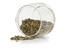 Groene thee in pot Stock Afbeelding