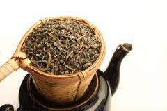 Groene thee in zeef Royalty-vrije Stock Afbeeldingen
