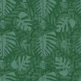 Groene tinten Monstera, palmbladen stock illustratie
