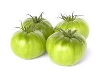 Groene tomaten. Stock Fotografie