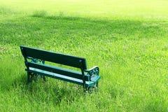 Groene tuin Stock Afbeelding