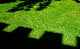 Groene tuin Royalty-vrije Stock Afbeeldingen