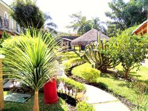 Groene tuin in Cuernavaca Mexico Stock Fotografie