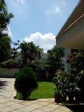 Groene tuin met installaties en blauwe hemel in witte wolken Stock Fotografie