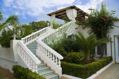 Groene tuin over blauwe hemel Royalty-vrije Stock Foto
