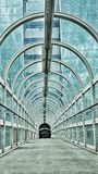 Groene tunnel Stock Afbeelding
