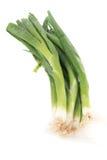 Groene uien stock afbeelding