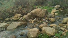 Groene vallei in Algerije Stock Afbeeldingen