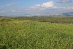 Groene Vallei in Israël naast Jordanië royalty-vrije stock foto