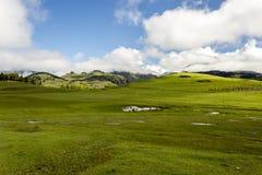 Groene vallei met bergdorp Omalo in de bergen van de Kaukasus Georgi?, Tusheti royalty-vrije stock fotografie