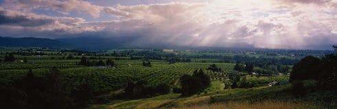 Groene vallei met huizen en landbouwbedrijven royalty-vrije stock foto
