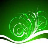 Groene vectorachtergrond Stock Fotografie